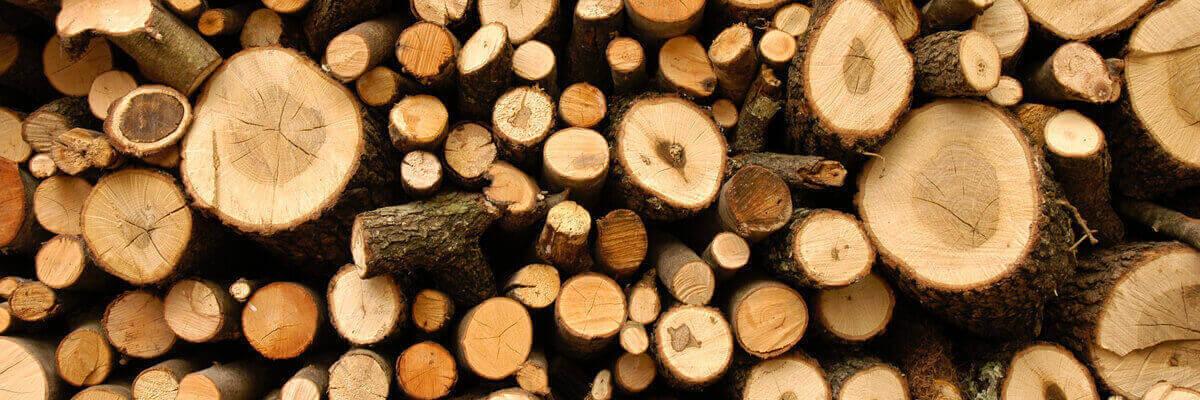 clipart logs