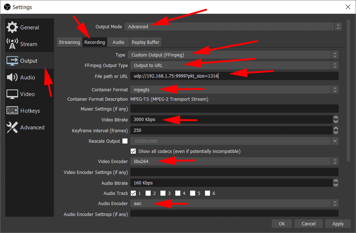 screenshot showing obs settings