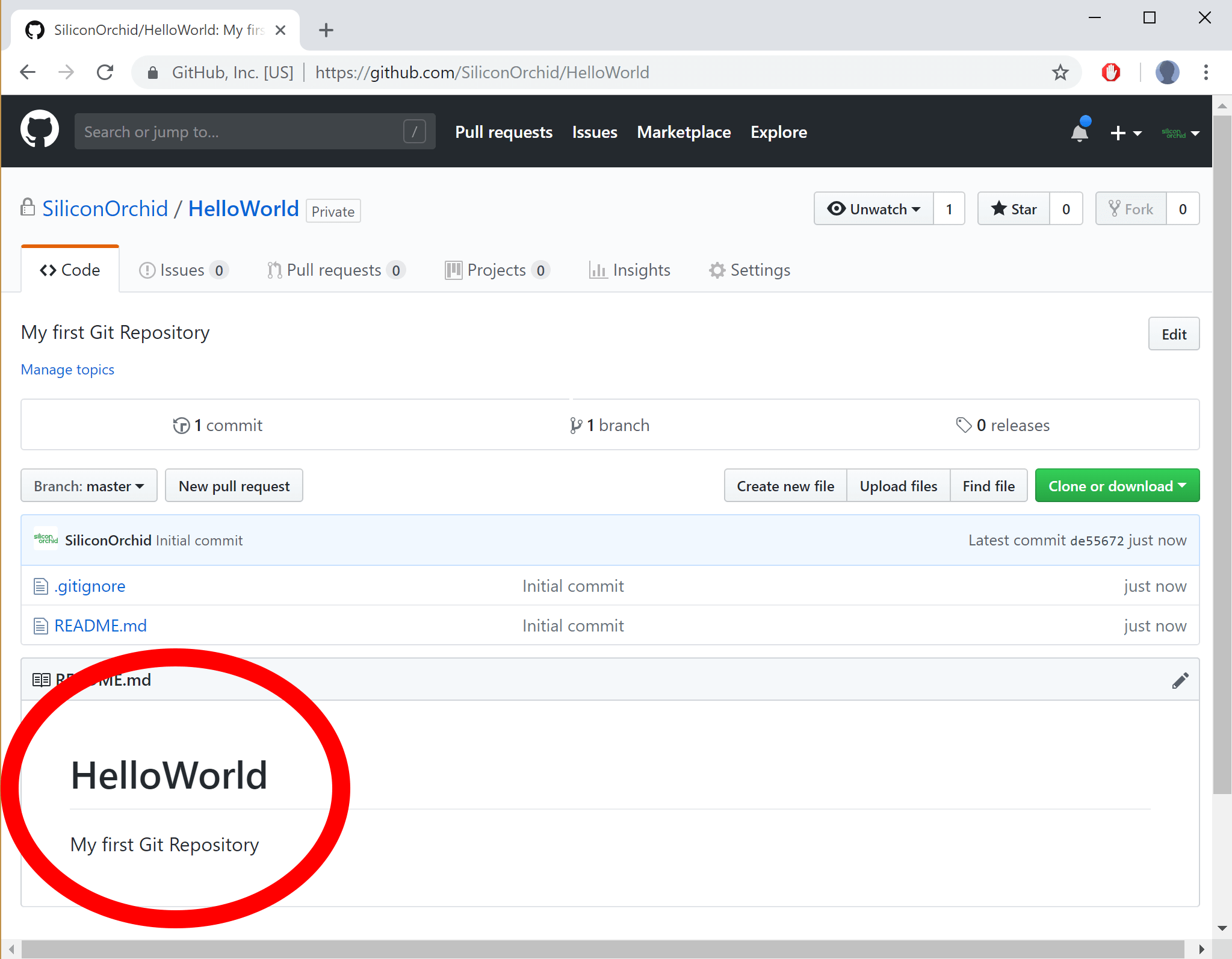 image showing GitHub new empty Repo