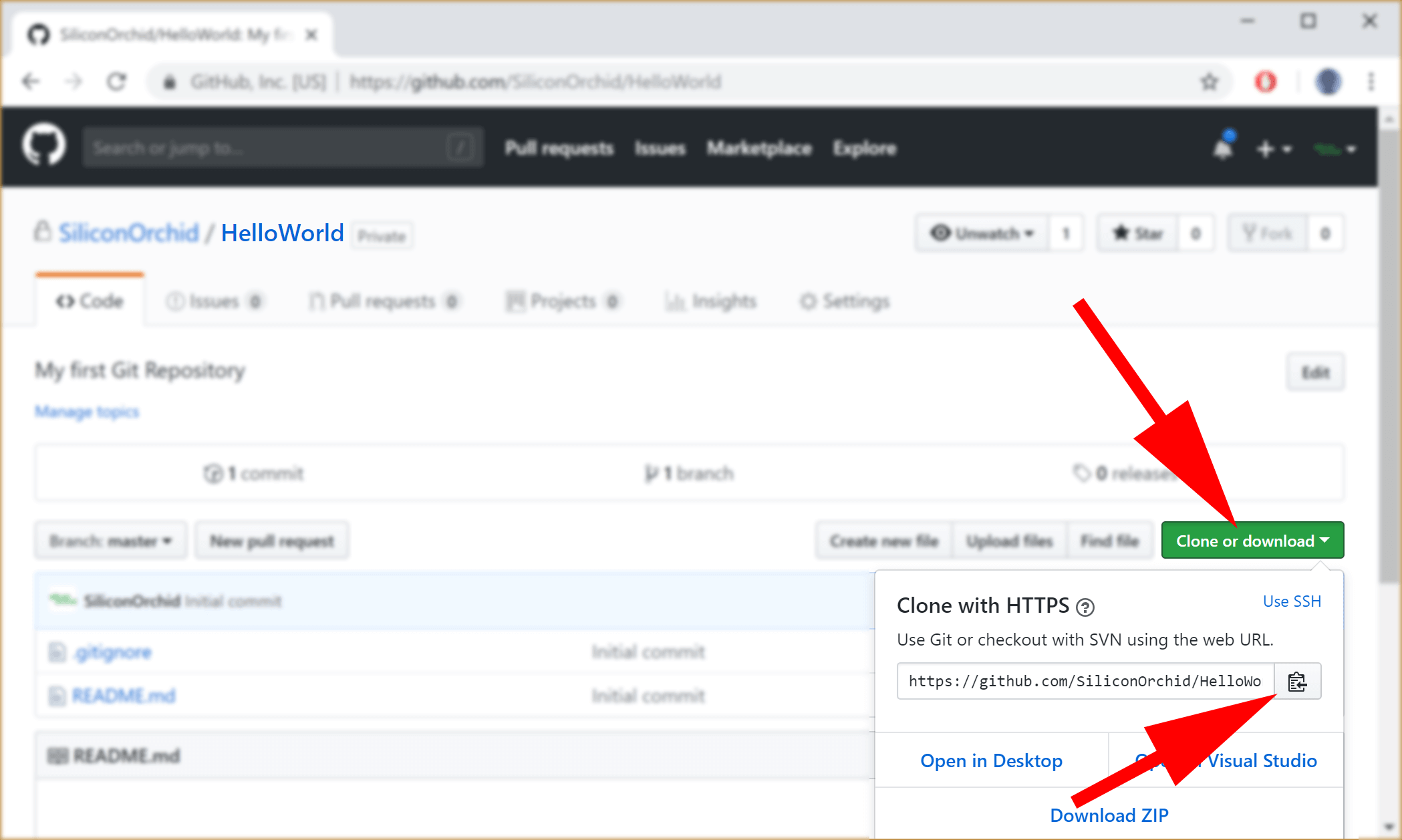 image showing GitHub clone buttons